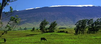 Parker Ranch lands with snow on Mauna Kea.